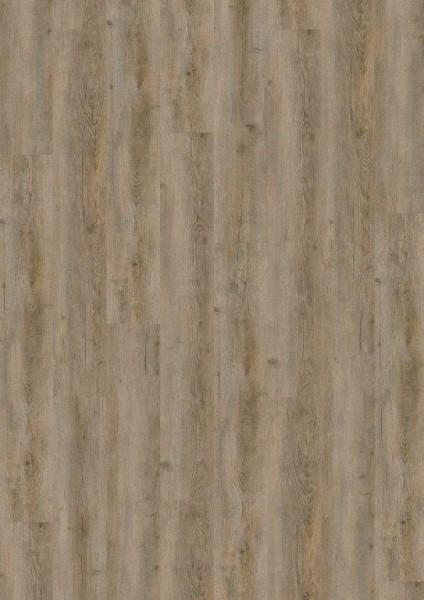 Terhürne Vinylboden base.59 *Pinie V522* Landhausdiele mit integrierter Kork-Trittschalldämmung