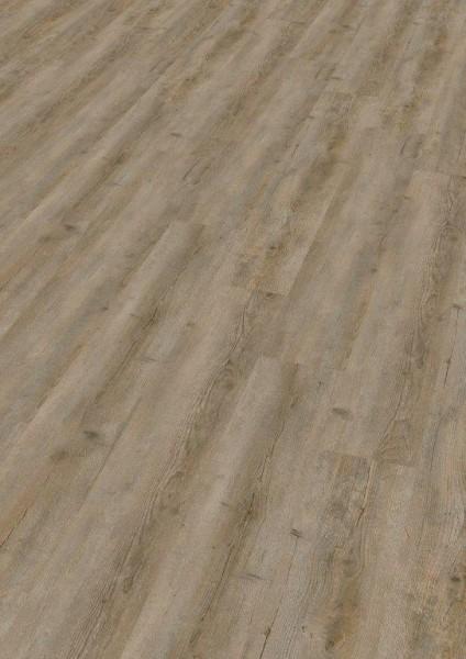 Terhürne Vinylboden base.59 *Pinie V522* Landhausdiele