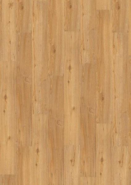 Terhürne Vinylboden base.59 *Eiche V505* Landhausdiele mit integrierter Kork-Trittschalldämmung
